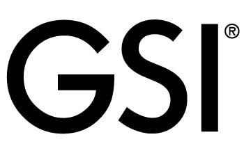 immagine GSI